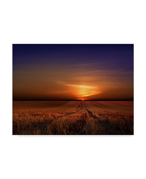 "Trademark Global Nicolas Schumacher 'Morning Sunset' Canvas Art - 19"" x 2"" x 14"""
