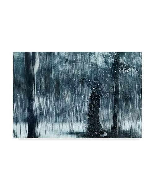 "Trademark Global Svetlana Melik Nubarova 'Snowfall' Canvas Art - 47"" x 2"" x 30"""