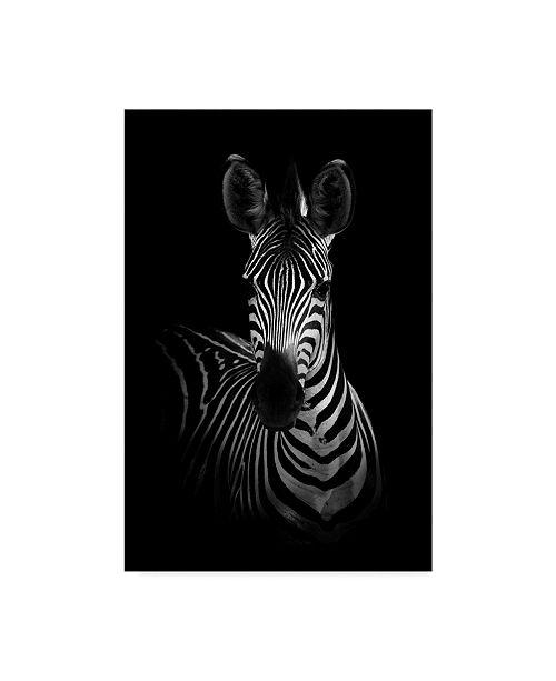 "Trademark Global Wildphotoart 'The Zebra' Canvas Art - 16"" x 2"" x 24"""
