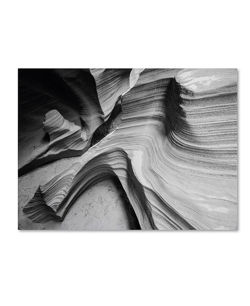 "Trademark Global Moises Levy 'Snake Canyon' Canvas Art - 19"" x 14"" x 2"""