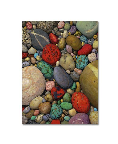 "Trademark Global Stephen Stavast 'Shallows of Treasure Creek' Canvas Art - 19"" x 14"" x 2"""