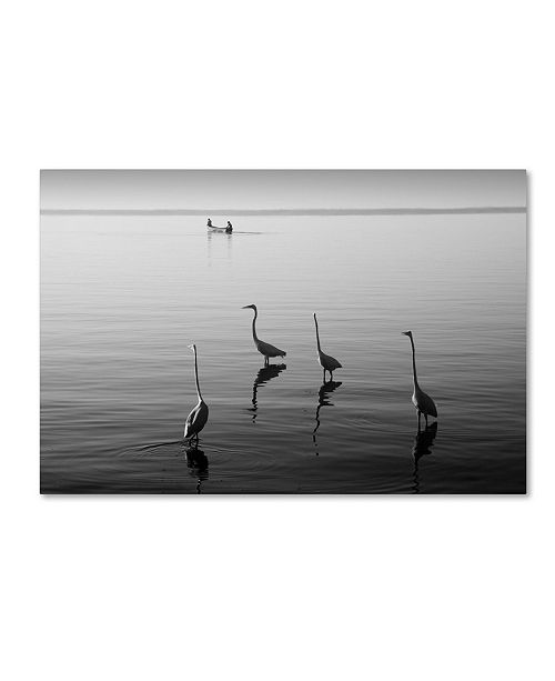 "Trademark Global Moises Levy '4 Herons and Boat' Canvas Art - 47"" x 30"" x 2"""