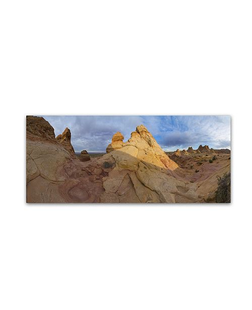 "Trademark Global Moises Levy 'Cottonwood II' Canvas Art - 32"" x 14"" x 2"""