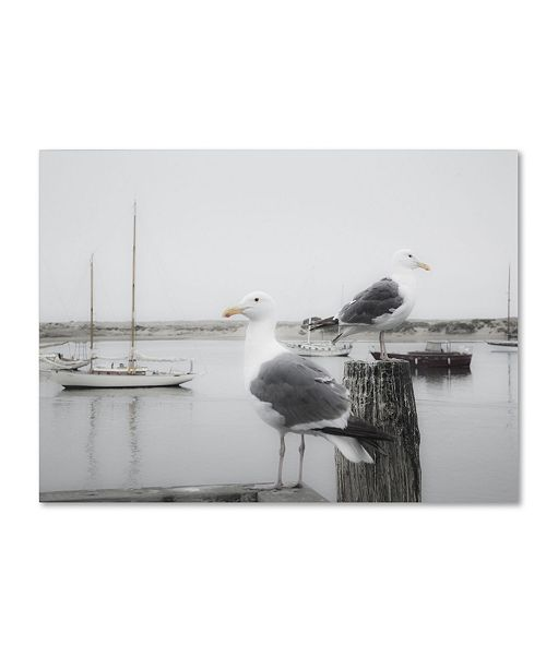 """Trademark Global Moises Levy 'Two Seagulls & Boats' Canvas Art - 24"""" x 18"""" x 2"""""""