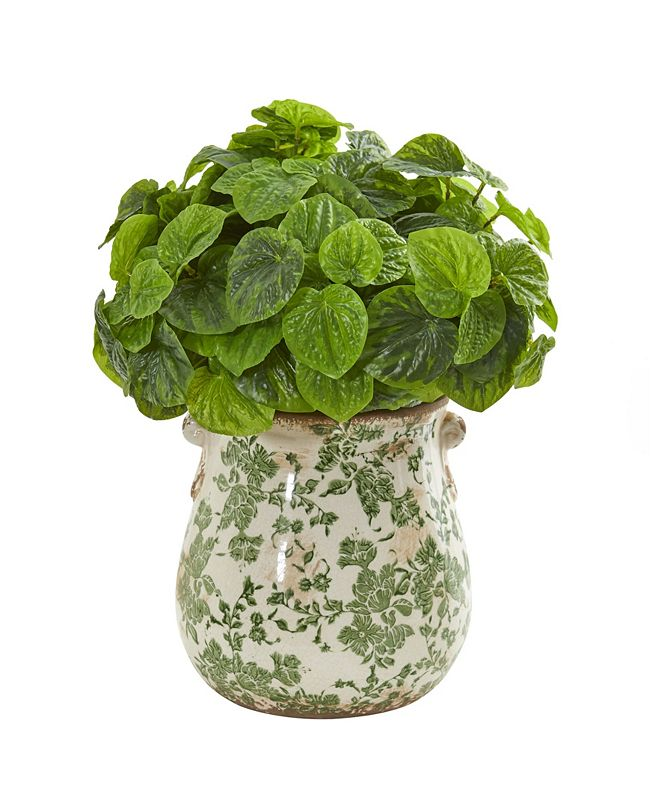 Nearly Natural Peperomia Artificial Plant in Floral Vase (Real Touch)
