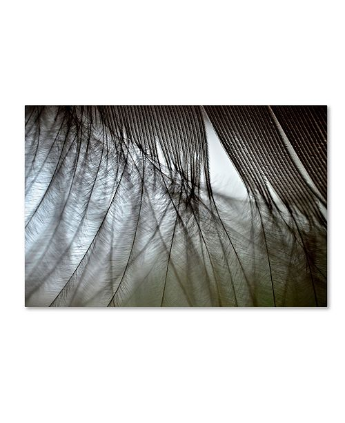 "Trademark Global Mike Melnotte 'When Dreams Meet Reality' Canvas Art - 47"" x 30"" x 2"""