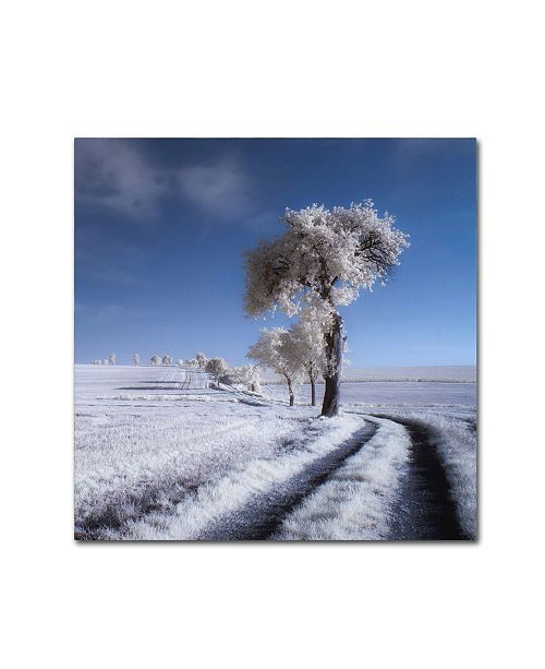 "Trademark Global Piotr Krol 'Winter In Summer' Canvas Art - 18"" x 18"" x 2"""