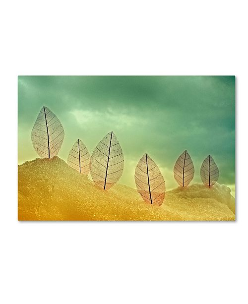 """Trademark Global Miki Meir Levi 'Leaves In The Sand' Canvas Art - 24"""" x 16"""" x 2"""""""