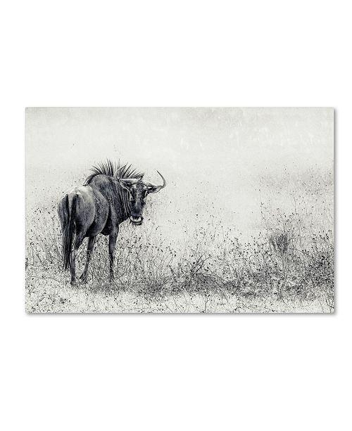 """Trademark Global Piet Flour 'The Endless Grass Fields' Canvas Art - 47"""" x 30"""" x 2"""""""