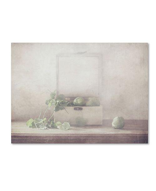 "Trademark Global Delphine Devos 'Harvest Vegetables' Canvas Art - 47"" x 35"" x 2"""