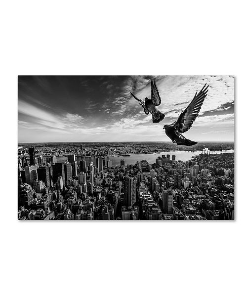 "Trademark Global Sergio Sousa 'Pigeons On The Empire State Building' Canvas Art - 24"" x 16"" x 2"""