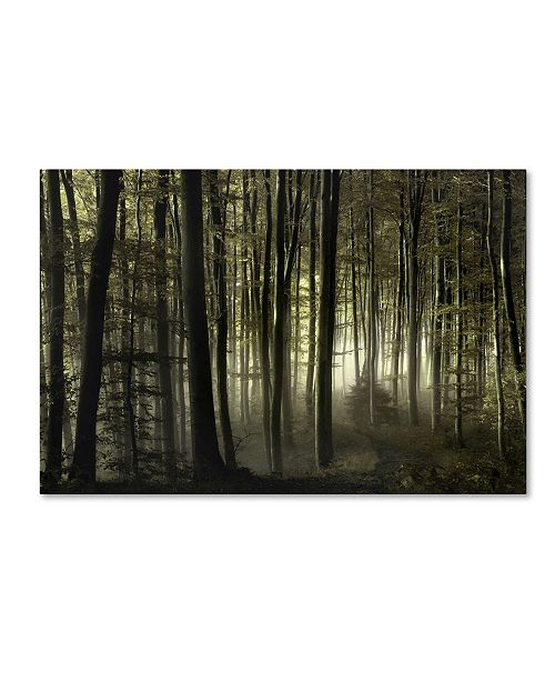 """Trademark Innovations Norbert Maier 'Into The Unknown' Canvas Art - 19"""" x 12"""" x 2"""""""