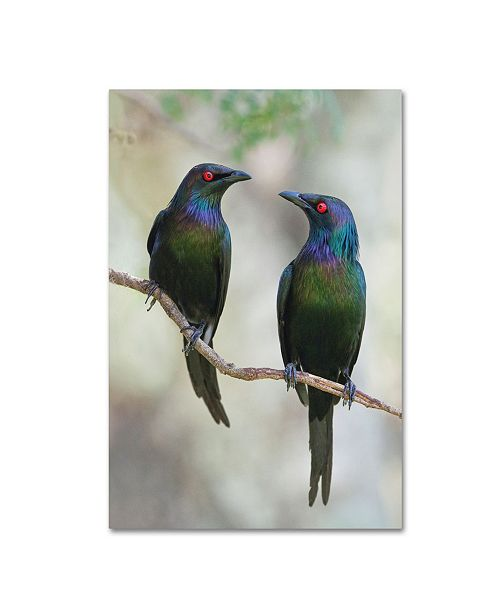 "Trademark Global Jacqueline Hammer 'Beautiful Couple' Canvas Art - 47"" x 30"" x 2"""