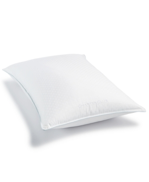 Charter Club European White Down Pillow