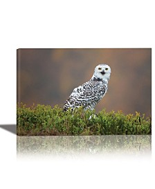 Eurographics Snowy Owl Framed Canvas Wall Art