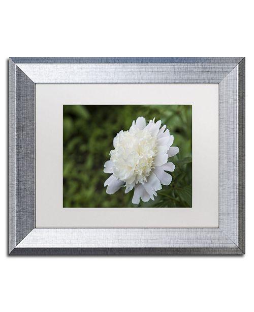 "Trademark Global Kurt Shaffer 'White Peony' Matted Framed Art - 11"" x 14"""