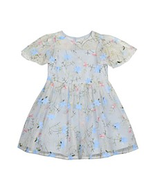 Little Girls Embroidered Mesh Dress