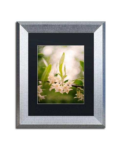 """Trademark Global PIPA Fine Art 'Floral Tranquility' Matted Framed Art - 11"""" x 14"""""""
