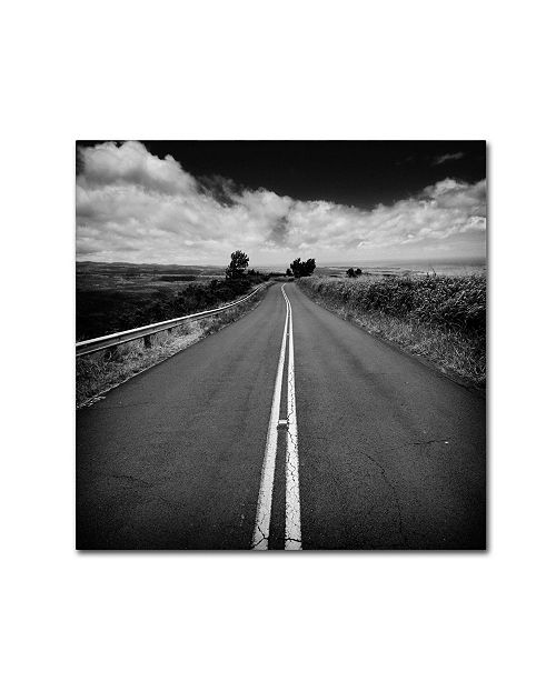 "Trademark Global Rob Cherry 'Kauai Road' Canvas Art - 14"" x 14"""