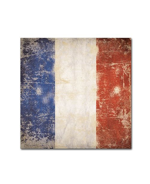 "Trademark Global Stephanie Marrott 'French Flag' Canvas Art - 14"" x 14"""