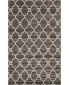 Pashio Pas2 Gray 5' x 8' Area Rug