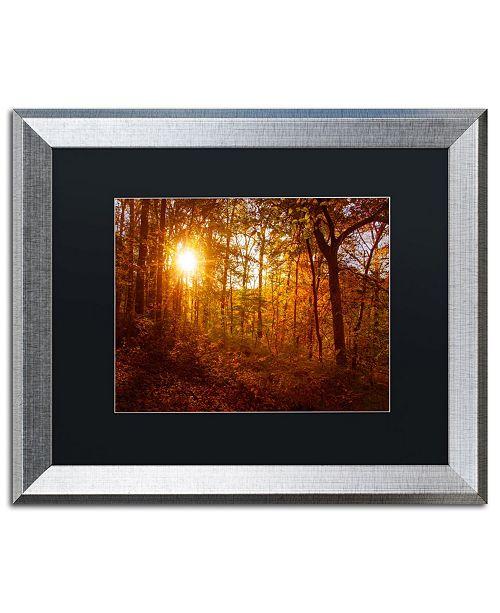 """Trademark Global PIPA Fine Art 'Autumn Sunset' Matted Framed Art - 16"""" x 20"""""""