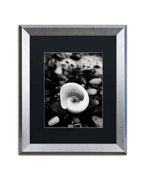 "Trademark Global PIPA Fine Art 'Glowing Beach Shell' Matted Framed Art - 16"" x 20"""