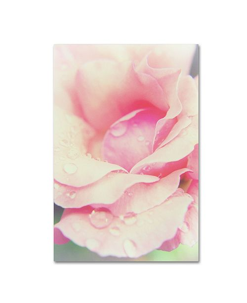 "Trademark Global PIPA Fine Art 'Softened Rose' Canvas Art - 16"" x 24"""