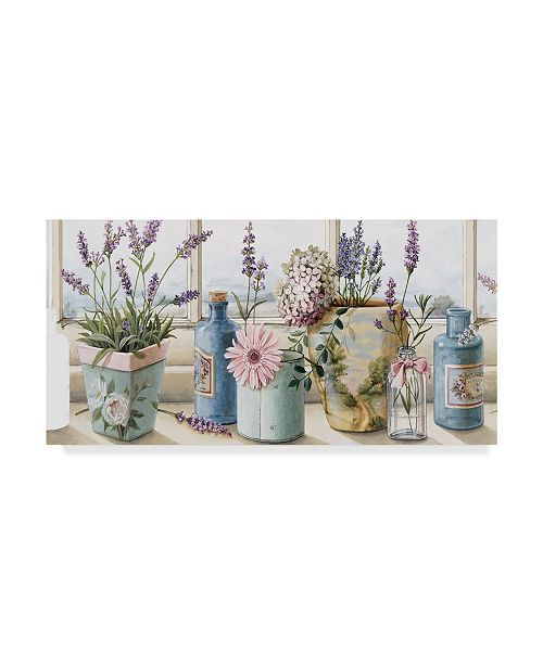 "Trademark Global Lisa Audit 'Flowers on the Window Sill' Canvas Art - 16"" x 32"""