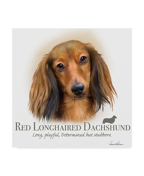 "Trademark Global Howard Robinson 'Red Longhaired Dachshund' Canvas Art - 18"" x 18"""