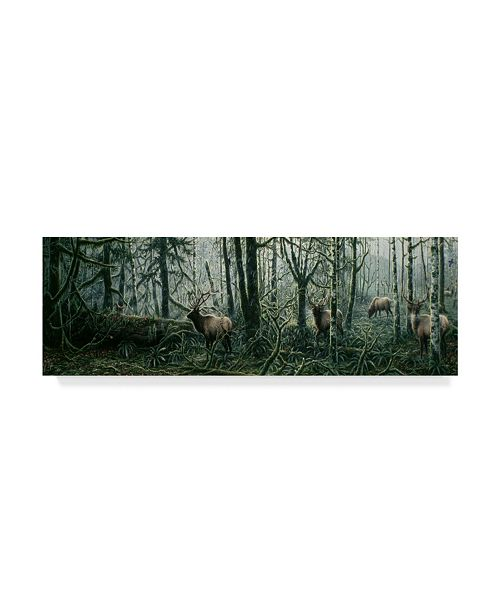 "Trademark Global Jeff Tift 'Enchanted Forest' Canvas Art - 16"" x 47"""