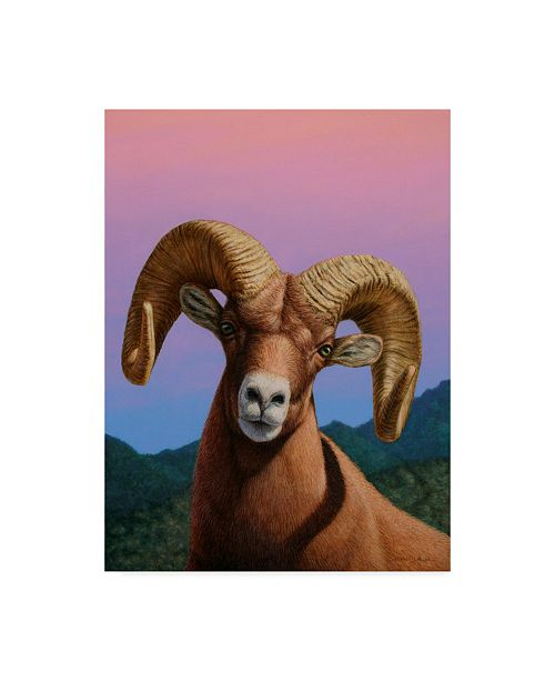 "Trademark Global James W. Johnson 'Bighorn' Canvas Art - 24"" x 32"""