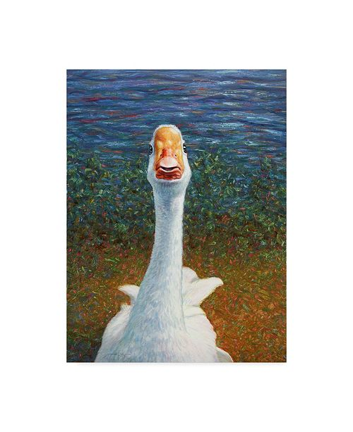 "Trademark Global James W. Johnson 'Goose' Canvas Art - 14"" x 19"""
