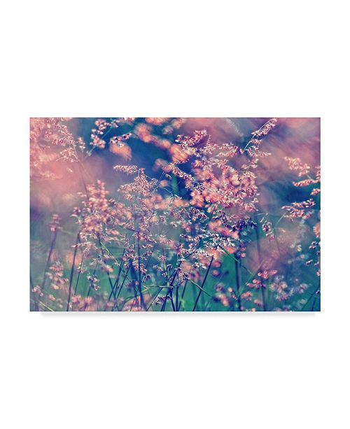 "Trademark Global Incredi 'Pink Fragility' Canvas Art - 24"" x 16"""