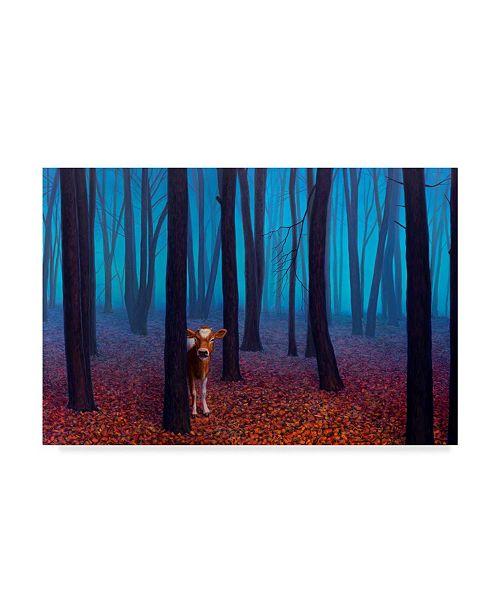 "Trademark Global James W. Johnson 'Introvert' Canvas Art - 24"" x 16"""