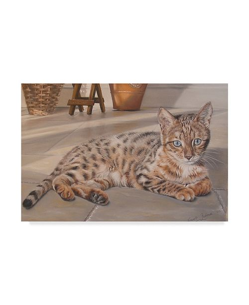 "Trademark Global Janet Pidoux 'Bengal Kitten' Canvas Art - 24"" x 16"""