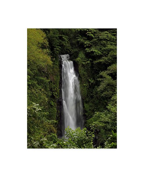 "Trademark Global J.D. Mcfarlan 'Jungle Falls' Canvas Art - 14"" x 19"""