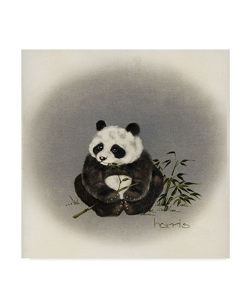 "Trademark Global Peggy Harris 'Big Baby' Canvas Art - 18"" x 18"""
