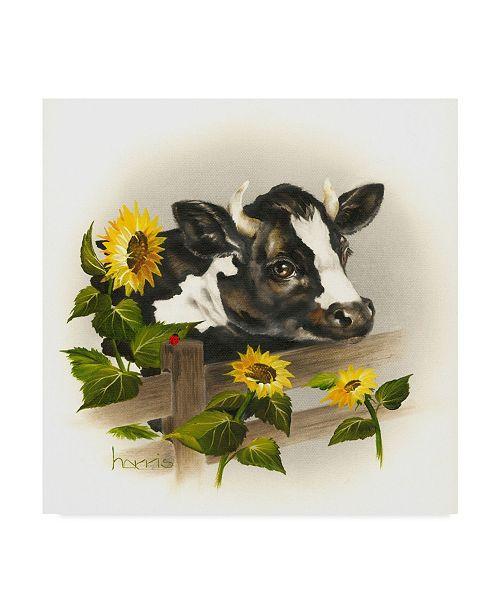 "Trademark Global Peggy Harris 'Bull & Sunflowers' Canvas Art - 14"" x 14"""