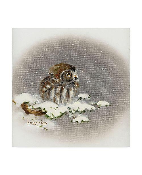 "Trademark Global Peggy Harris 'Snow Daze' Canvas Art - 14"" x 14"""