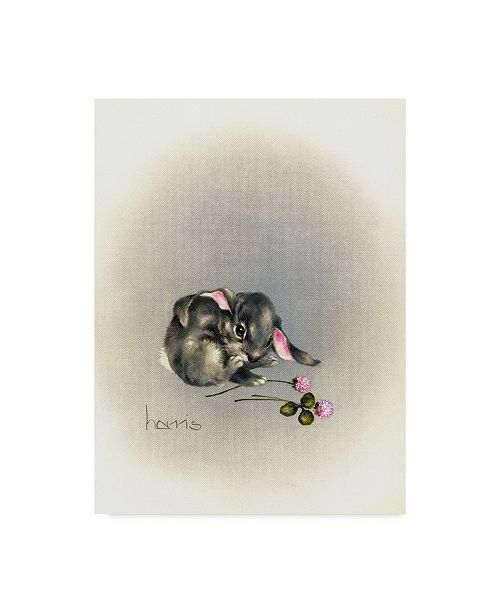 "Trademark Global Peggy Harris 'Ears Lookin At You Kid' Canvas Art - 18"" x 24"""