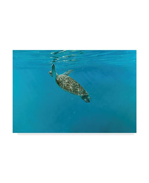 "Trademark Global Michael Jackson 'Diving Turtle' Canvas Art - 24"" x 16"""