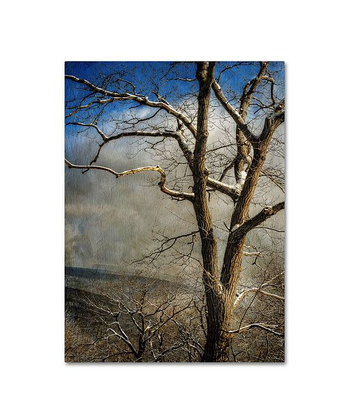"Trademark Global Lois Bryan 'Tree In Winter' Canvas Art - 19"" x 14"""