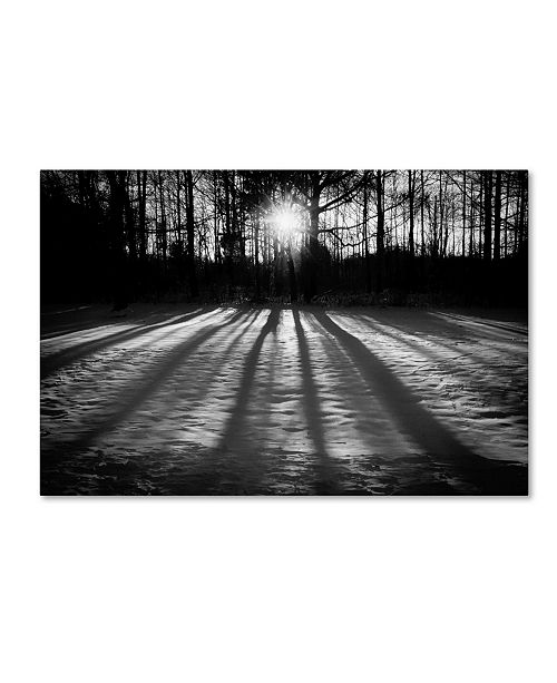 "Trademark Global PIPA Fine Art 'Winter Shadows' Canvas Art - 30"" x 47"""