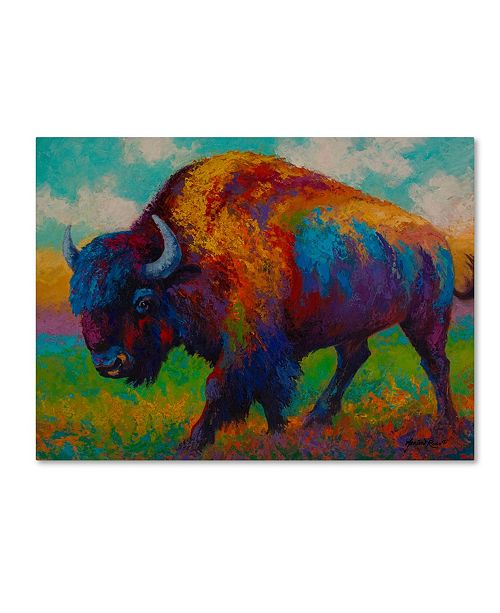 "Trademark Global Marion Rose 'Prairie Muse' Canvas Art - 24"" x 32"""