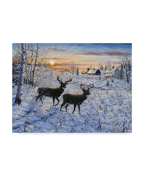 "Trademark Global Jeff Tift 'Two Deer In The Moonlight' Canvas Art - 24"" x 32"""
