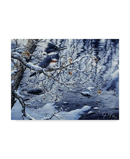 "Trademark Global Jeff Tift 'Icy Reflections' Canvas Art - 35"" x 47"""