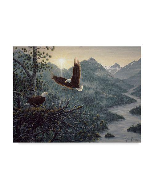 "Trademark Global Jeff Tift 'Eagles Nest' Canvas Art - 35"" x 47"""