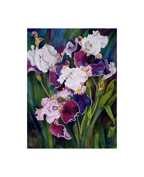 "Trademark Global Joanne Porter 'Wind Blown Iris' Canvas Art - 35"" x 47"""