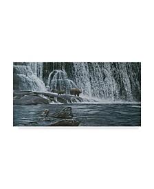 """Ron Parker 'Grizzlies Falls' Canvas Art - 24"""" x 47"""""""